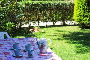 Maison fleurs Achaia Greece