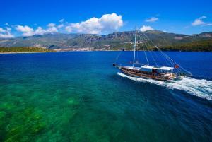 obrázek - Blue Cruise