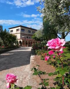 Villa Paradiso - AbcAlberghi.com