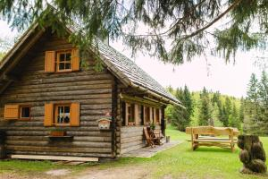Wood house Irena-Počitniška hiša