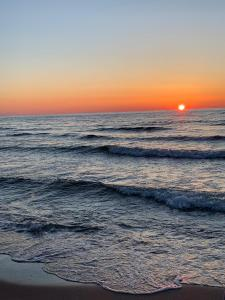 Ives Golden Gardenia Seaside