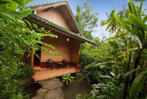 obrázek - The Aura Shanti Retreat