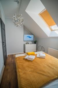 Apartament w Cieplicach 5 Premium
