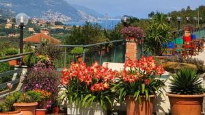 Azienda Agrituristica Monte