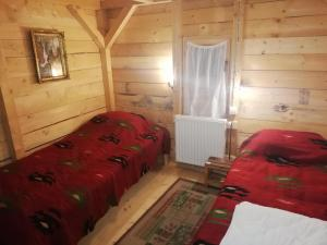 Planinska kuća Buša - Hotel - Dobroselica