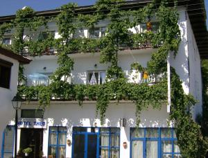 Hostels e Albergues - Hotel Theo