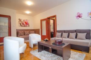 Apartments Biser, Ferienwohnungen  Vrnjačka Banja - big - 16