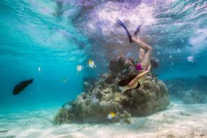 Pacific Resort Rarotonga, Resort  Rarotonga - big - 94