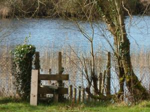 Clondanagh B&B and Farm-on-the-Lake, Bed and breakfasts  Tulla - big - 48