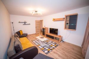 Cozy Apartment Mazepa