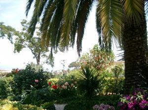 Hotel & Residence Matarese, Hotels  Ischia - big - 20
