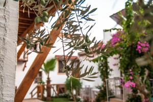 Courtyard Hotel Kalkan (29 of 54)