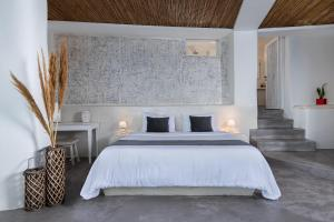 Andronis Luxury Suites (5 of 94)