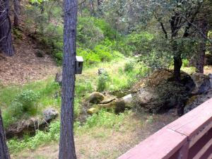 Yosemite Creekside Birdhouse, Ferienhäuser  Wawona - big - 47