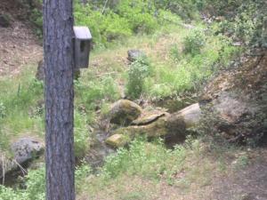 Yosemite Creekside Birdhouse, Nyaralók  Wawona - big - 85