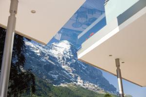 Parkhotel Schoenegg, Hotely  Grindelwald - big - 96