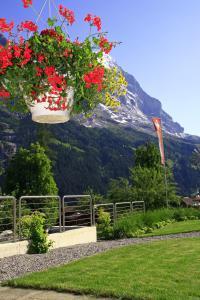 Parkhotel Schoenegg, Hotely  Grindelwald - big - 51
