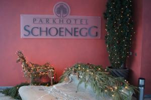 Parkhotel Schoenegg, Hotels  Grindelwald - big - 15