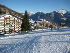 Appartement Op De Alpenweide / Skipiste - Hotel - Torgon