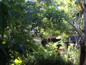 Villa Bhuana Alit, Гостевые дома  Убуд - big - 67