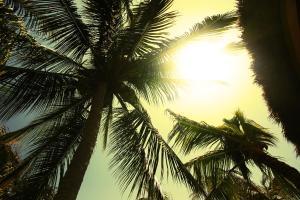 One Love Hostal Puerto Escondido, Hostely  Puerto Escondido - big - 41