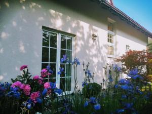 Molonówka Guest House
