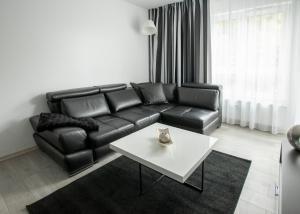 Apartament Solny 105