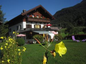 Appartement Scheibling, Appartamenti  St. Wolfgang - big - 34