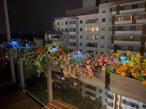Przytulny apartament z widokiem na morze 12 piętro