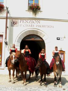 Penzion U Císaře Zikmunda, Penziony  Znojmo - big - 23