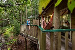 obrázek - Narrows Escape Rainforest Retreat
