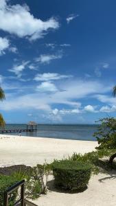 Cancun Beachfront Condos 101