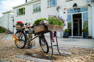Grove House Bed & Breakfast, Bed and Breakfasts  Carlingford - big - 65