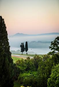 Villa Loggio Winery and Boutique Hotel, Hotely  Cortona - big - 62