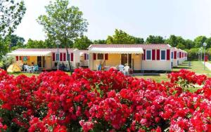 Mobilehomes in Sirmione/Gardasee 22177 - AbcAlberghi.com