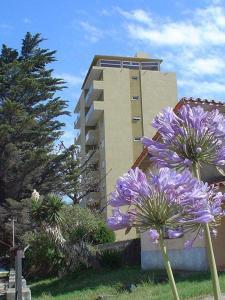 Departamentos Alhambra, Apartmány  Villa Gesell - big - 14