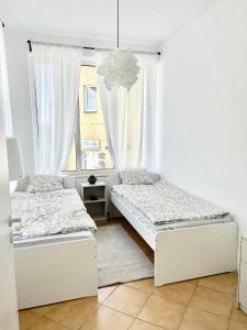 Apartamenty w centrum Lubniewic
