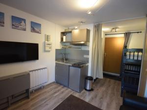 Appartement Bernex, 1 pi?ce, 4 personnes - FR-1-498-44