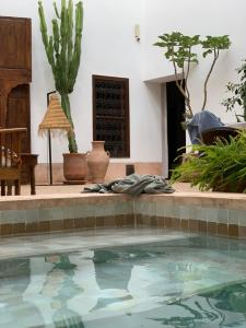 Riad UP (3 of 74)