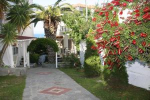 Hostels e Albergues - Anatoli