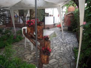 Lile Pestani Accommodation, Гостевые дома  Пештани - big - 40