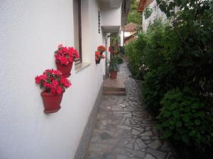 Lile Pestani Accommodation, Гостевые дома  Пештани - big - 124