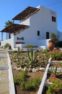 Hostels e Albergues - Studios Fivos