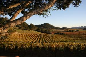 Calistoga Ranch (21 of 26)