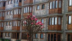 Hotel Namche, Отели  Nāmche Bāzār - big - 64