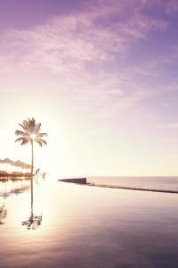 Marquis Los Cabos Resort & Spa (16 of 61)