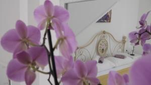 Villa Claudia, Apartments  Fažana - big - 1