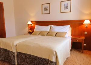 Hotel Raffaello, Hotely  Praha - big - 27