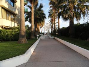 Cannes Terrace Beach Front & Sea view, Apartments  Cannes - big - 93