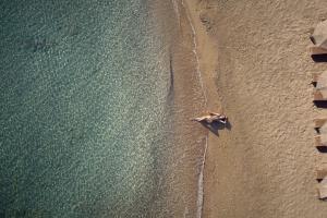 Lesante Blu Exclusive Beach Resort (32 of 148)